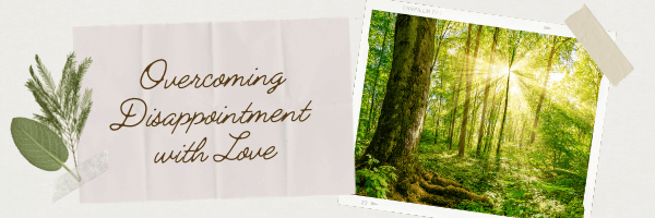 Overcoming dissapointment with Love header